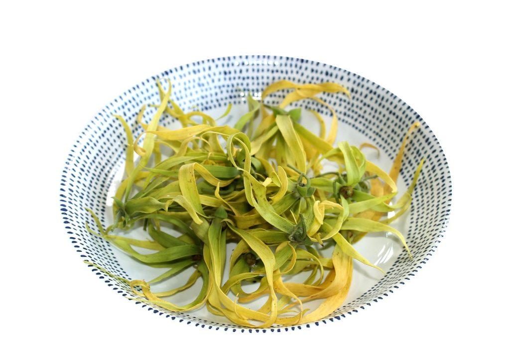 petale de floare ylang ylang asezate pe o farfurie
